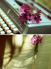 Fleur et Livre ({peace&love}) Tags: old blue shadow flower typewriter yellow vintage hair book words nice diptych pretty dof purple calm pinkparis1233