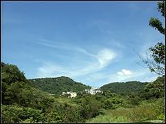 DSC03139 Photo
