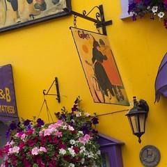 ibi000001.jpg (keithlevit) Tags: county flowers ireland irish signs flower window sign yellow wall photography europe gallery republic exterior basket purple box cork fineart advertisement galleries kinsale baskets signage hanging walls lantern exteriors advertise levit faade keithlevit keithlevitphotography