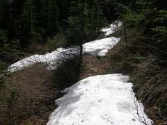 Snow patches in last part of upper Tull Canyon trail.