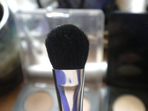 makeup 037