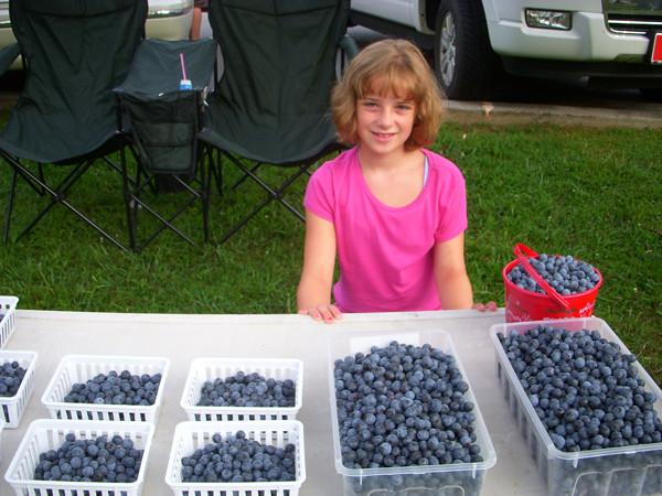 blueberry-girl