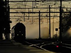 (bogers) Tags: netherlands train track ns rail railway denhaag railways thehague bogers trein spoor ov openbaarvervoer nederlandsespoorwegen straatfotografie basbogers 20100723 portfoliobasbogers