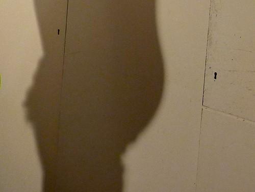 Pregnant Shadow -3