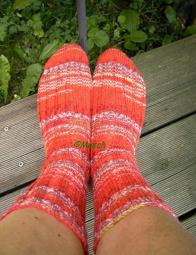 Fabel Socken 005