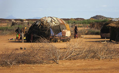 7c. Typical Samburu nomads' huts