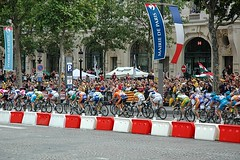 the peloton on les Champs (by: C. Frank Starmer, creative commons licesnse)