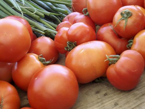 Garten-Tomaten