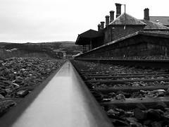 Gorsaf y Borth, 2010 (Rhisiart Hincks) Tags: trên train tren trena geltoki gare stèisean henthouarn hynshorn trenbide chemindefer railway rathadiarainn cledr rail rheilen kenlinenn track trac sleepers gobenyddion yborth ceredigion kembra wales cymru kembre gales galles 威爾斯 威尔士 wallis uels kimrio valbretland 웨일즈 велс gallas walia duagwyn gwennhadu blackwhite zuribeltz blancetnoir gorsaf stáisiún tihenthouarn tigar estacion station porzhhouarn rheilffordd iarnród burdinbide eisenbahn ferrocarril ferrovia geležinkelis 铁路 鉄道 caleferată monochrome unlliw blancoynegro zwartwit dubhagusgeal dubhagusbán blackandwhite bw