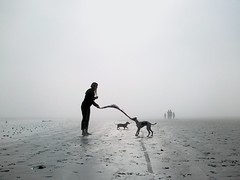 Misty day on Melkbos (mallix) Tags: world africa winter summer vacation cloud white mist holiday playing tourism beach dogs silhouette misty fog strand walking southafrica milk still sand warm quiet afternoon tour play african fifa soccer sandy sunday sausage overcast canine running capetown visit whippet tourist dachshund misha bite kiki stroll milky sighthound fritz 2010 walkingthedogs melkbos saffer melkbosstrand 2010worldcup