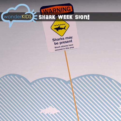 <(wonderkids)! shark warning sign!