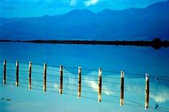 Lago de Sayula II (Guanatos Gwyn) Tags: mexico jalisco sayula rutajuanrulfo