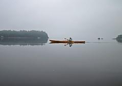 Foggy Lady (todonn9364) Tags: fog maine kayaking islesboro buoyant rydercove
