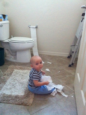 Babies, like cats, are compelled to unroll and destroy toilet paper.