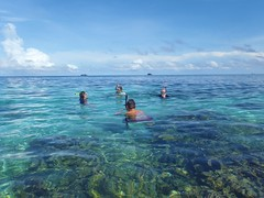 Great snorkeling! utilaguide.com