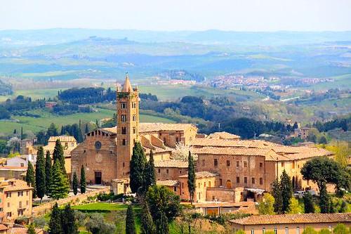 Santa Maria dei Servi, Siena