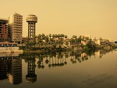 Nile River & Palms / El.Mansoura / Egypt - 14 05 2010 (Ahmed Al.Badawy) Tags: river palms shots 05 14 egypt nile ahmed 2010 elmansoura albadawy hutect