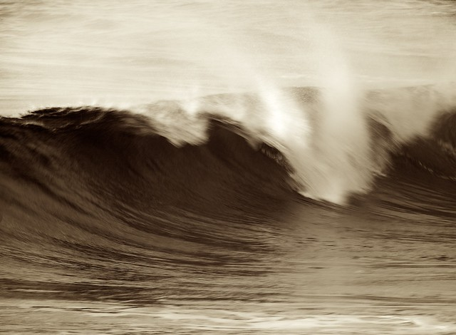 Shorebreak Sepia