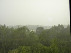Smog in western Russia (Timon91) Tags: forest smog russia forestfires trainamsterdammoscow