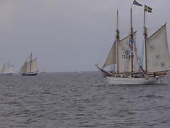 Hanse Sail Segel