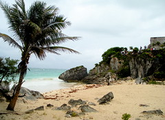 Cloudy Day at the Beach (jleathers) Tags: beach mexico yucatan tulum palm mayan 2010 quintanaroo