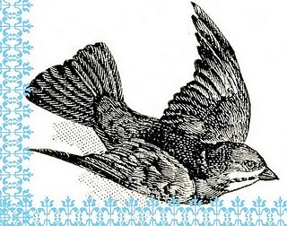 dictionbird