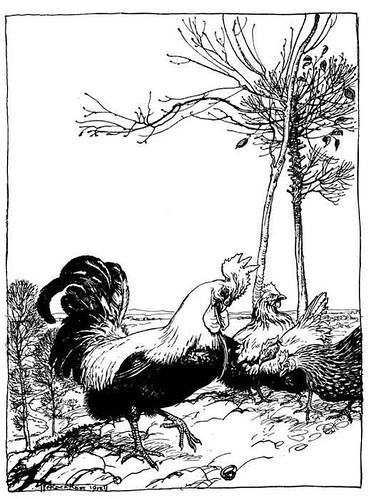 Gallus et Gemma
