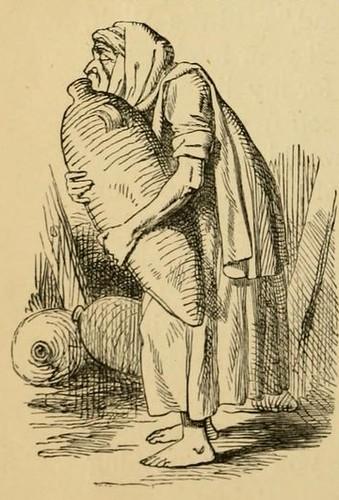 Anus et Amphora