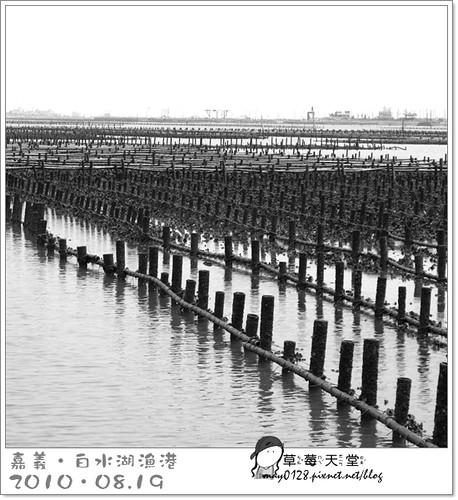 白水湖漁港25-2010.08.19