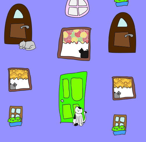 kitten closein