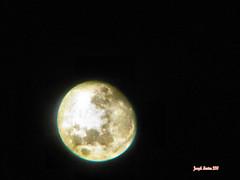 The Moon (shoot that!) Tags: moon solar revolution planet lunar solarsystem 2010