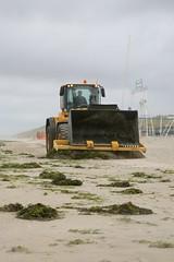 """France, Pas-de-Calais (62), Stella-Plage : chargeur sur pneus volvo L90F """" nettoyage de la plage """""""