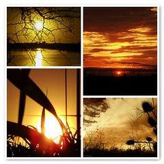 "'It is hard to be angry when one has seen the sun rise' / ""Es difcil estar enojado cuando se ha visto salir el sol' (Claudio.Ar) Tags: naturaleza santafe color nature topf25 argentina sunrise square fdsflickrtoys mosaic sony amanecer dsc h9 500x500 mywinners claudioar claudiomufarrege"