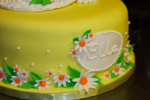 Ella's Cake 20100011