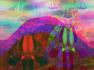LARRY CARLSON, DEER MOUNTAIN-DOUBLE SPIRIT, c-print, 24x20in., 2011.