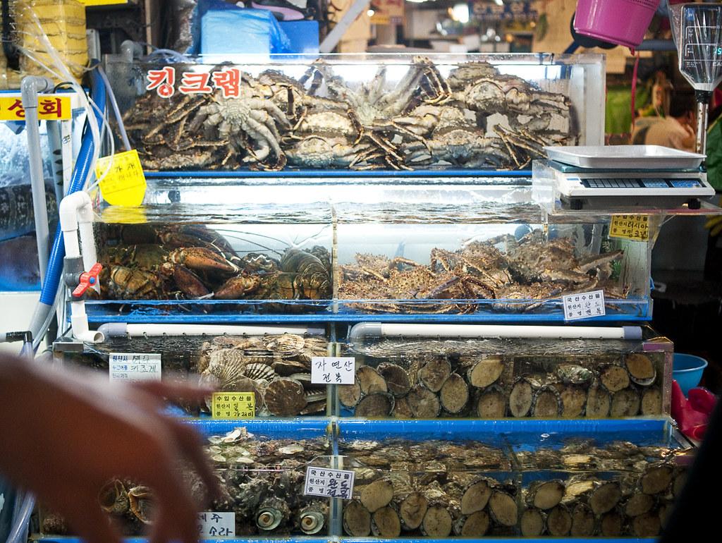 fishmarket01