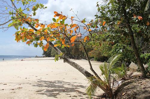 Mauritius-124