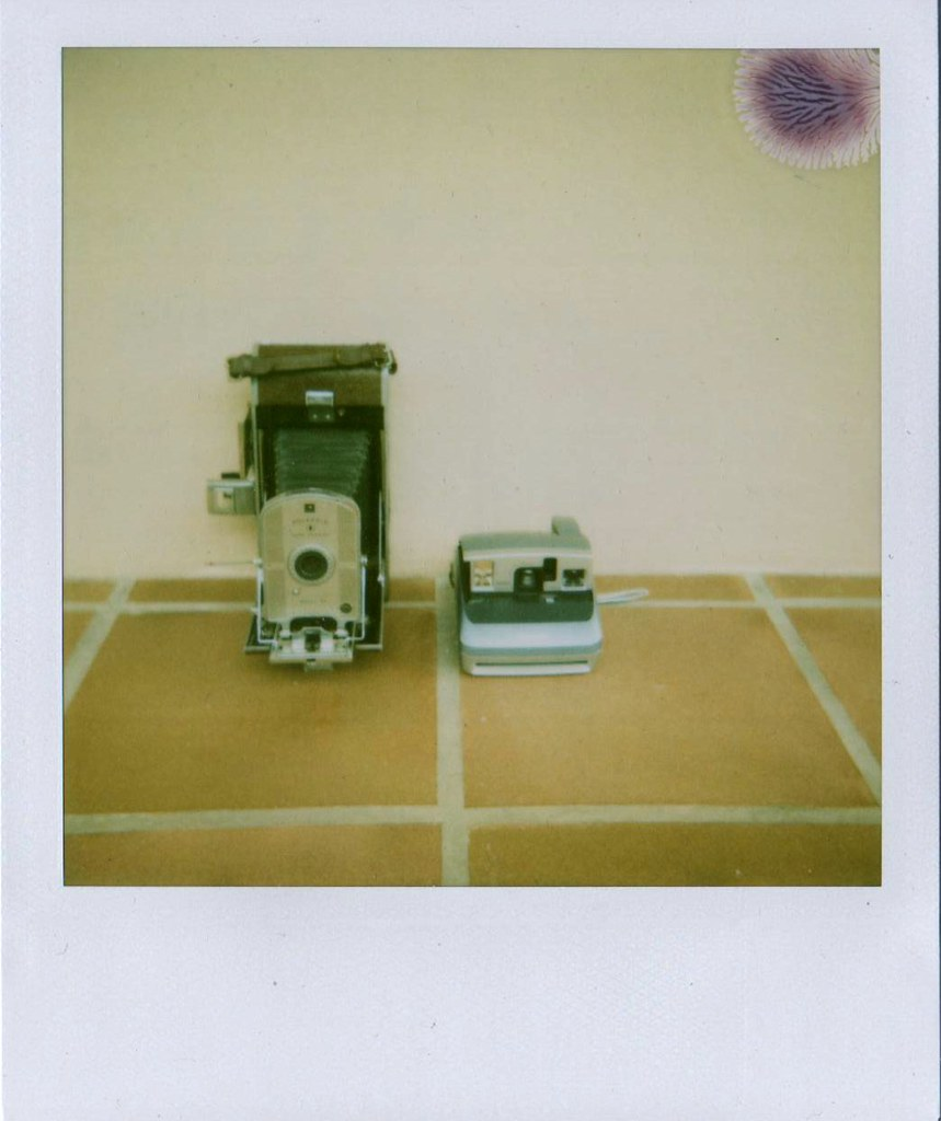 The First And Last Polaroids