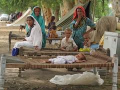 Punjab-03-6x (Caritas Internationalis) Tags: pakistan caritas floods 2010