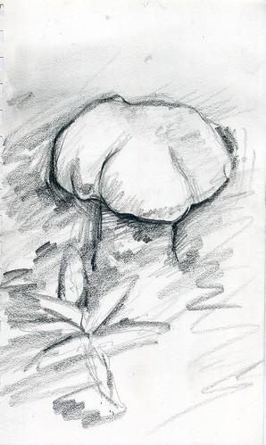 sketch234