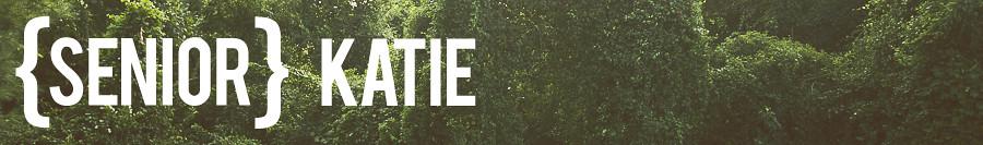 katie-banner