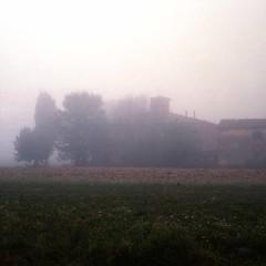 ... (peter.heindl) Tags: morning italien italy color 120 6x6 mamiya film fog analog landscape la italia nebel kodak tuscany roll analogue toscana landschaft portra morgen sinalunga fratta toskana rollfilm rb67