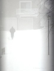 whiteout (christiaan_25) Tags: morning winter white snow storm man cold walking dangerous snowstorm windy historic neighborhood blinding lone daytime february snowfall blizzard epic whiteout thick outsidemywindow trudging hardtosee comingdownfast