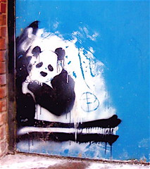 PANDA (billy craven) Tags: bear streetart chicago graffiti stencil panda