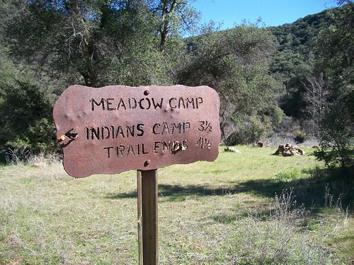 Meadow Camp