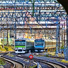 Yamanote Line (Kona Photos) Tags: railroad station japan train tokyo colorful tracks jr nippon  nihon kanto yamanoteline  japanrailways