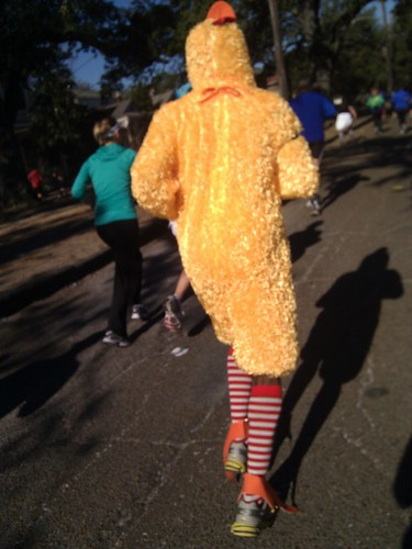 Miles 9 and 10, I paced with a chicken.