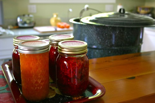 Apricot and Raspberry Apricot Jam in the Kitchen