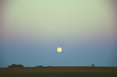 sky (yyellowbird) Tags: summer sky moon field landscape twilight midwest dusk