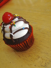 Chocolate Sundae Cupcake (Mara Bakes) Tags: ohio summer cherry rainbow state chocolate fair cupcake sprinkles vanilla buttercream ganche